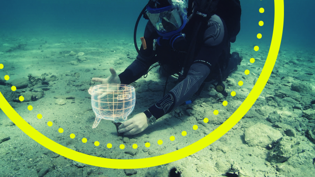Diver on the sea bed with a 3D visualisation of an ancient artefact